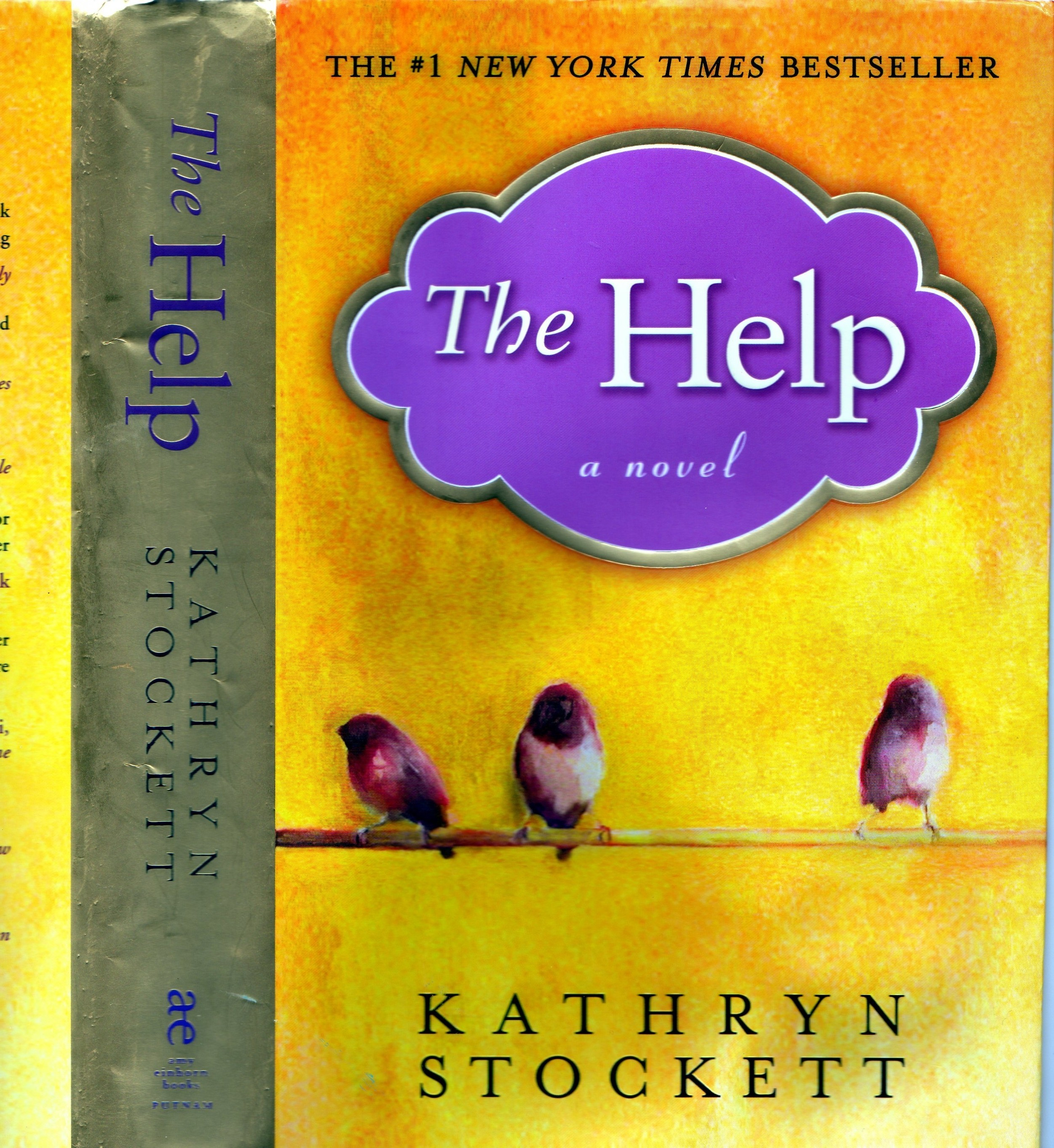 Essays on the help