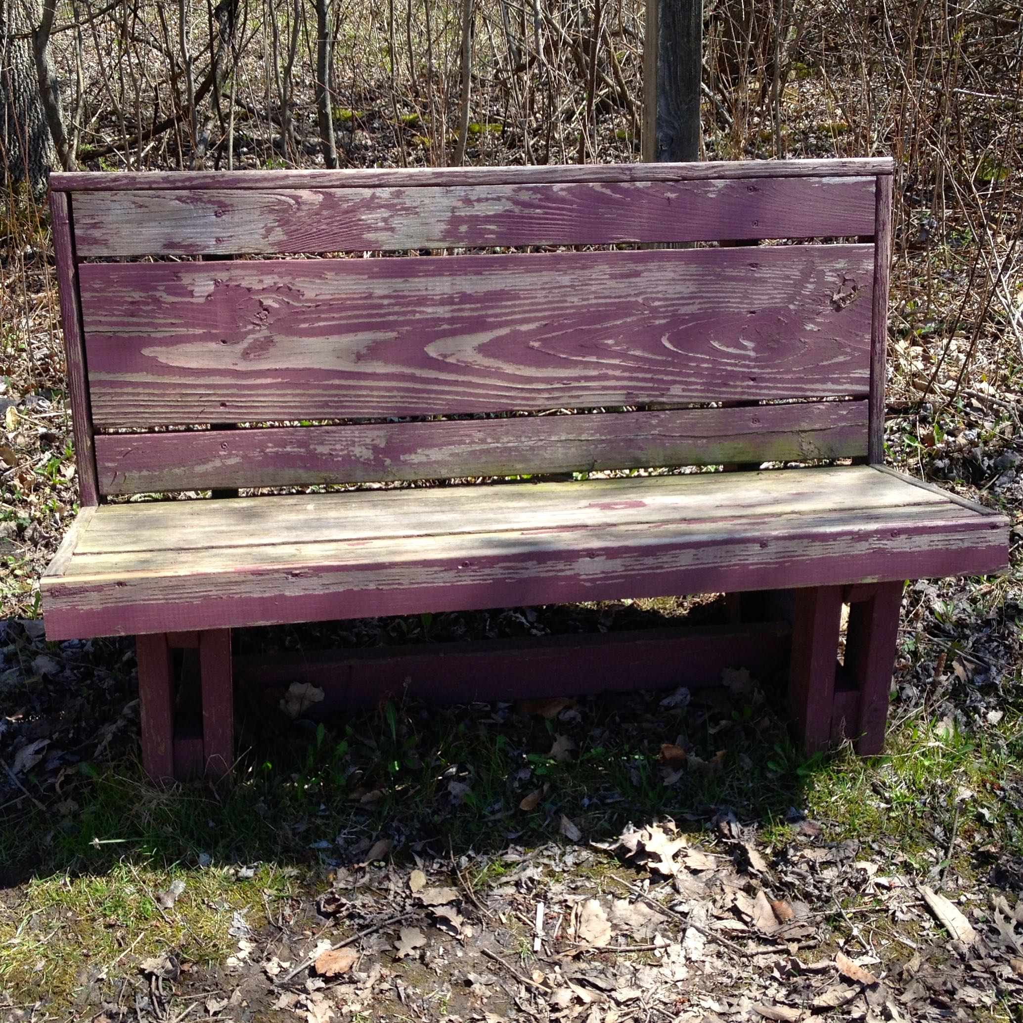 God gave me the bench