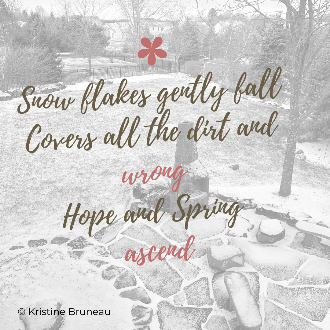 Snow flakes haiku